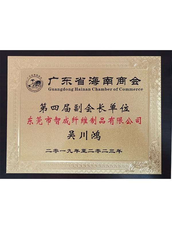 世纪娱乐总经理广东省海南商会第四届副会长单位