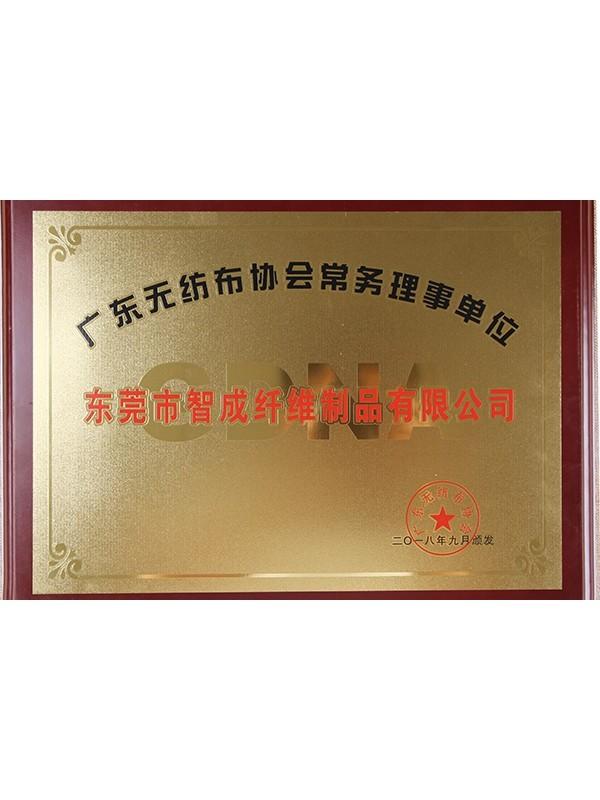 世纪娱乐广东省无纺布协会常务理事单位